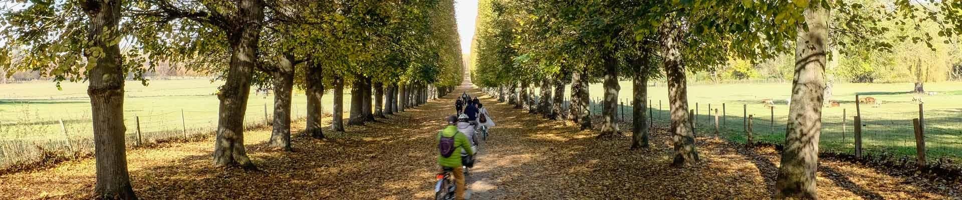 Versalles en otoño