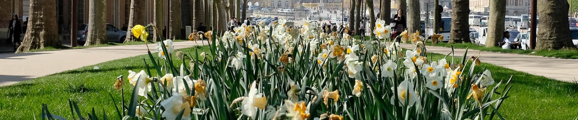 Versailles in spring
