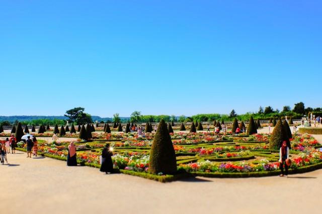 Billete jardines