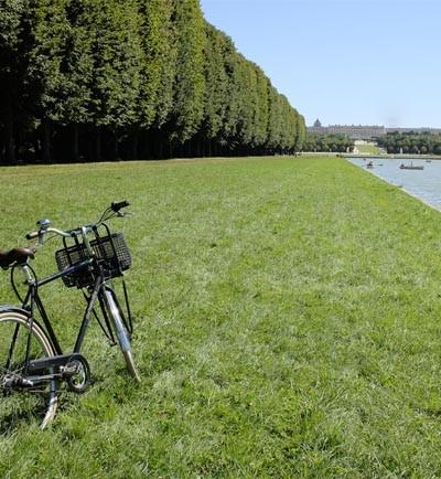 versailles-green-city-hp-392