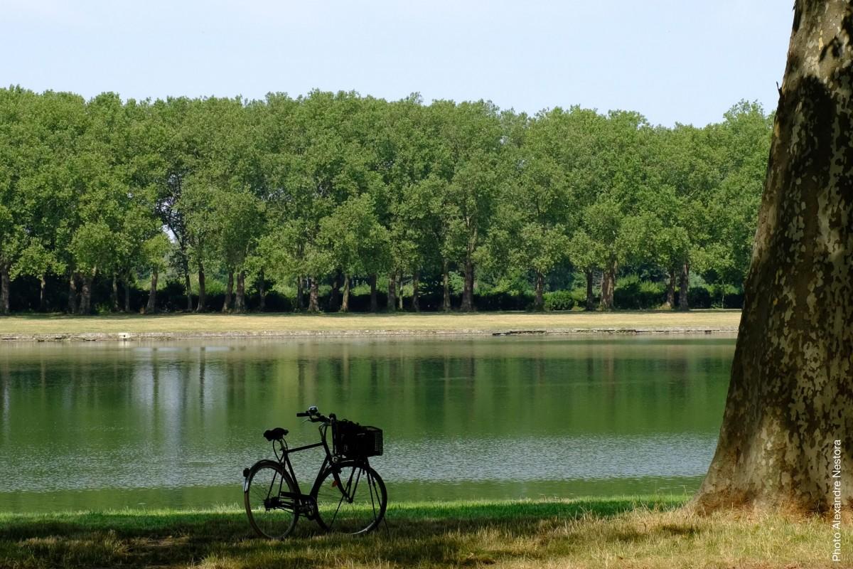 Revenir à Versailles en 2020