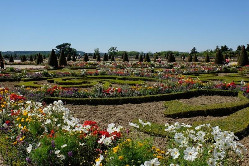 Jardins du château de Versailles en fleurs