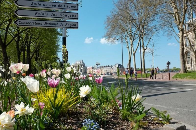 Vue sur le château des fleurs de l'Avenue de Sceaux