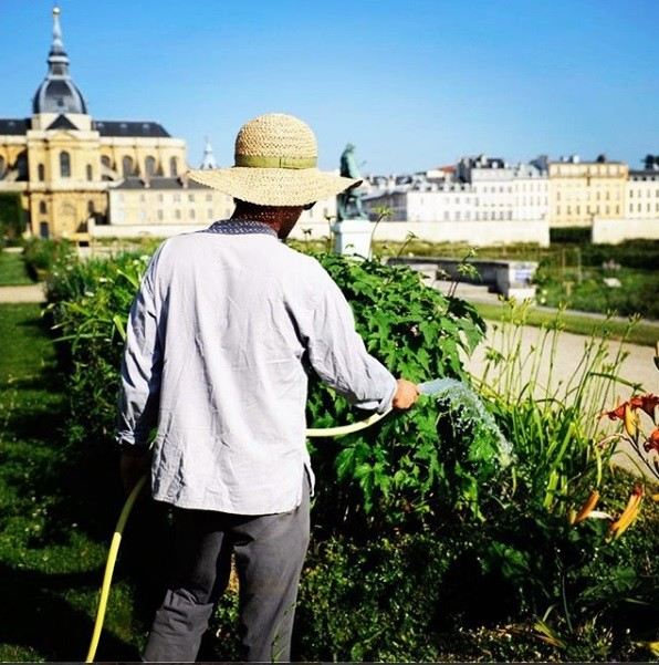 King's vegetable garden in Versailles