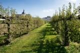 potager-du-roi-ville-de-versailles-27843