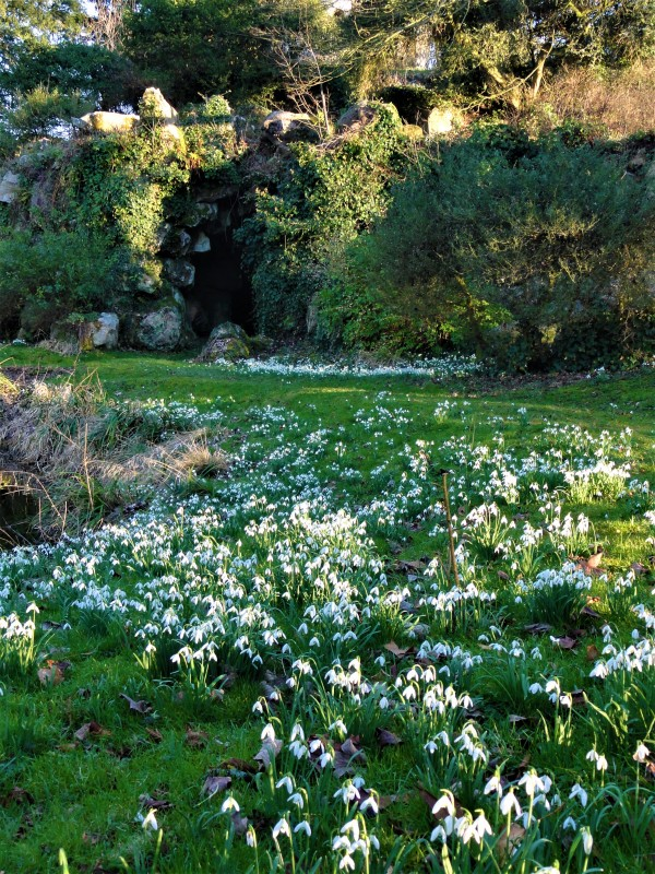 Parc Balbi Grotte Versailles Nature Fleurs Fleur Biodiversité Sortie Promenade Balade